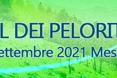3-trail.2021